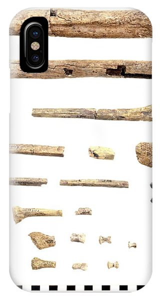 Er iPhone Case - Homo Skeleton Fragments by John Reader/science Photo Library