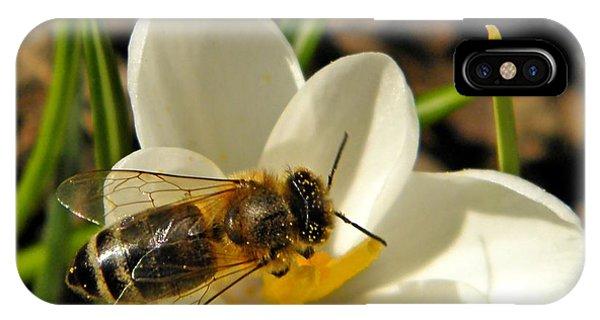 Honeybee iPhone X Case - Honey Bee And Crocus by Chris Berry