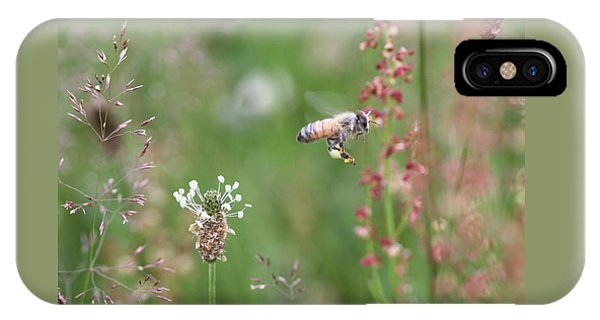 Honeybee Flying In A Meadow IPhone Case