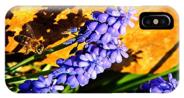 Honeybee iPhone X Case - Honeybee In Flight To Grape Hyacinth by Chris Berry