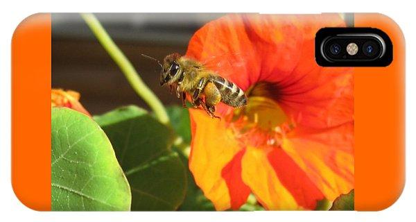 Honeybee Leaving Nasturtium With A Full Pollen Basket IPhone Case