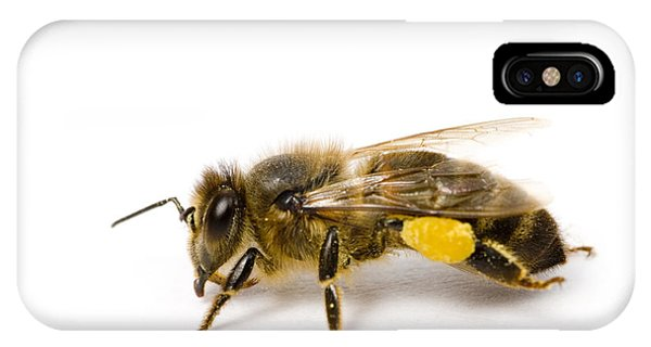 Honeybee iPhone X Case - Honeybee by Mark Bowler