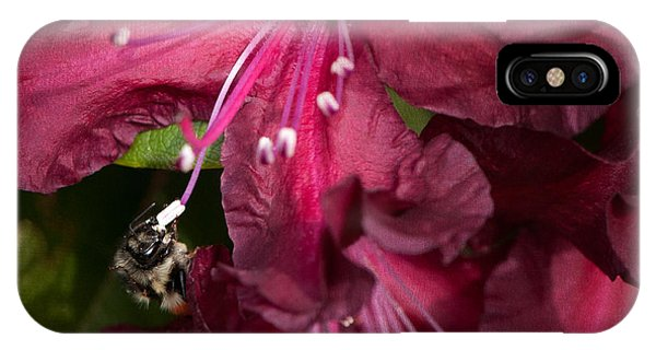 Honeybee iPhone X Case - Honeybee On Burgundy Rhododendron by Sharon Talson