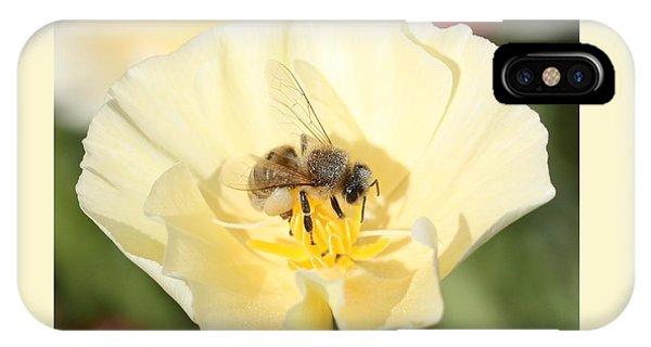 Honeybee On Cream Poppy IPhone Case