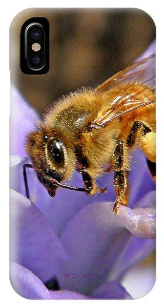 Honeybee iPhone X Case - Honeybee On Hyacinth by Chris Berry