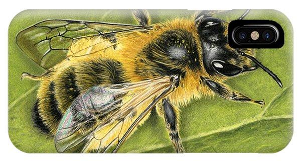 Hyper Realism iPhone Case - Honeybee On Leaf by Sarah Batalka