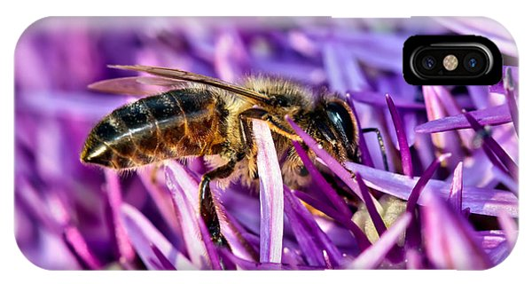 Honeybee Romping In The Garlic IPhone Case