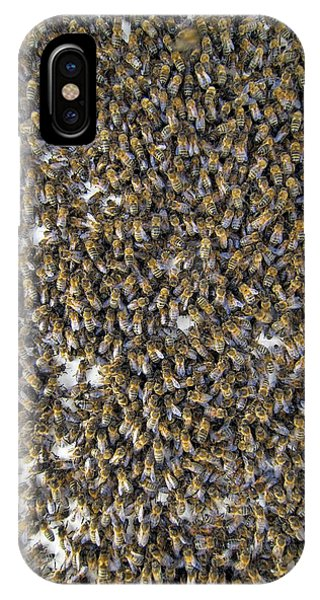 Honeybee iPhone X Case - Honeybee Swarm by Simon Fraser/science Photo Library