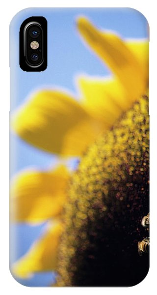 Honeybee iPhone X Case - Honeybees Pollinating A Sunflower by David Nunuk/science Photo Library