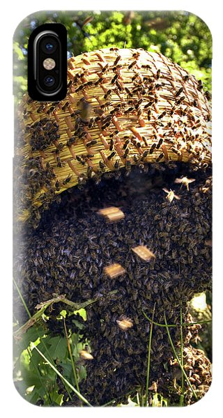 Honeybee iPhone X Case - Honeybees Swarming by Simon Fraser/science Photo Library