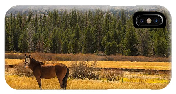 Hope Valley Horse IPhone Case