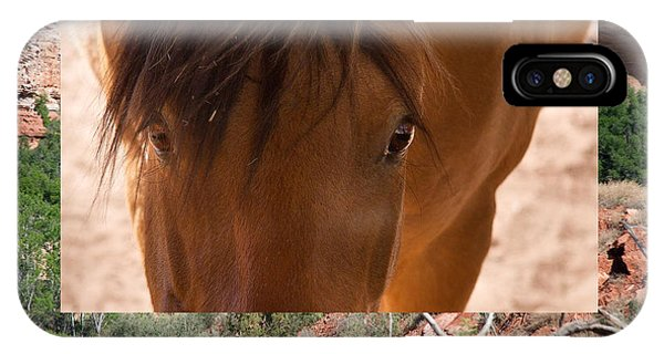 Horse And Canyon IPhone Case
