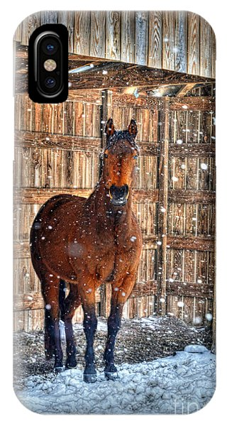 IPhone Case featuring the photograph Horse And Snow Storm by Dan Friend