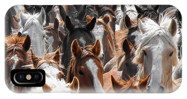 Horse Faces IPhone Case