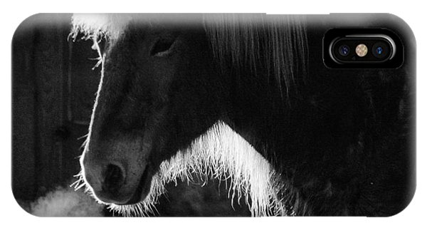 Animals iPhone Case - Horse In Black And White Square Format by Matthias Hauser