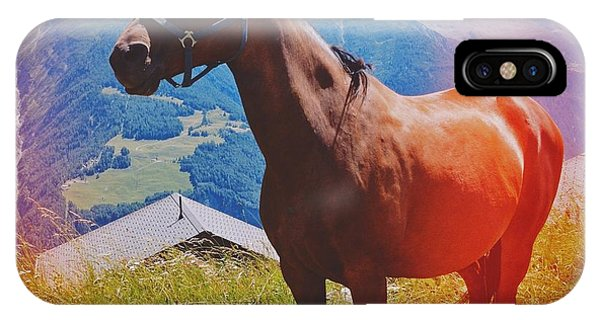 Animals iPhone Case - Horse In The Alps by Matthias Hauser