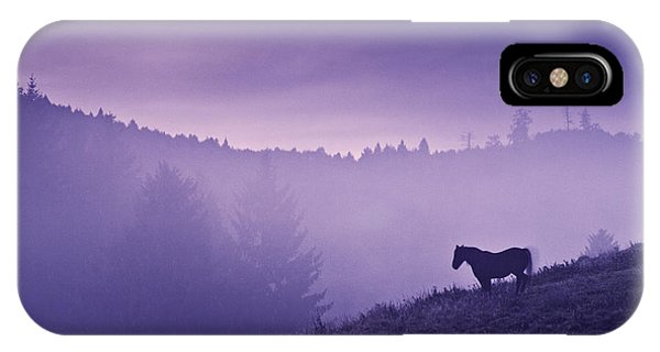 Horse In The Mist IPhone Case
