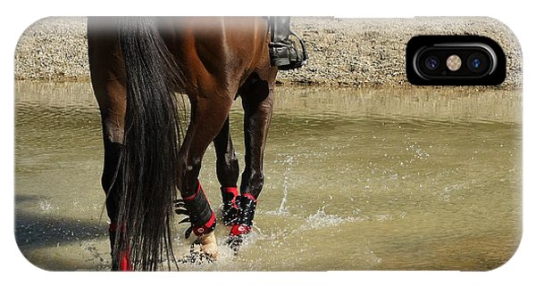 Horse In Water IPhone Case
