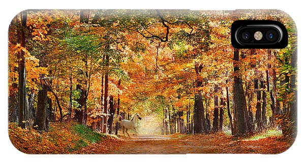 Horse Running Across Road In Fall Colors IPhone Case