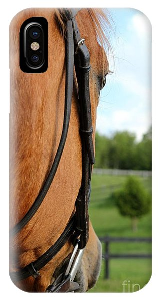 Horse View IPhone Case