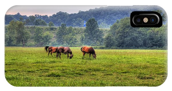 Horses In A Field 2 IPhone Case
