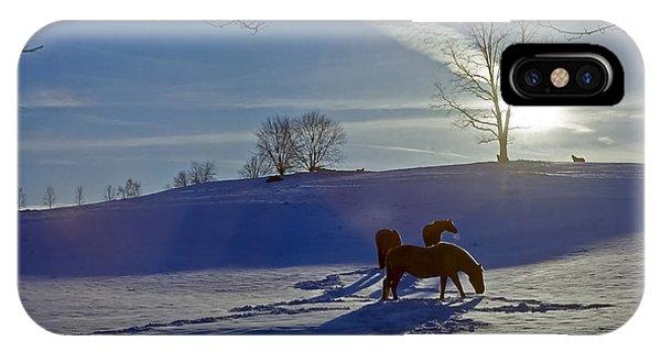 Horses In Snow IPhone Case