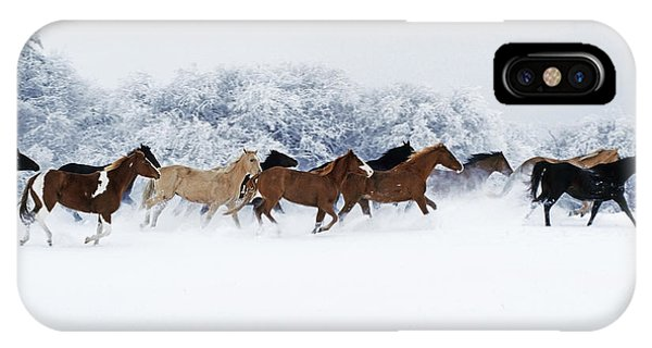 Winter iPhone Case - Horses In Winter by Thomas Sbampato
