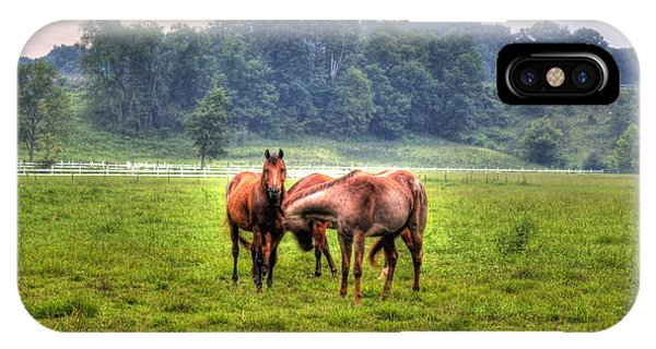 Horses Socialize IPhone Case