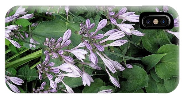 Hosta Ballet IPhone Case