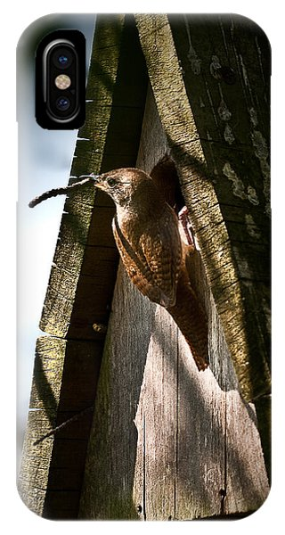 House Wren At Nest Box IPhone Case