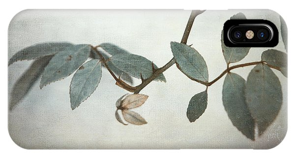 Leaf iPhone Case - How Delicate This Balance by Laurie Search
