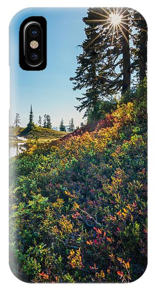 Huckleberry Afternoon IPhone Case