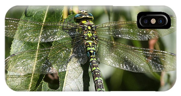 Huge Dragon-fly In Detail. IPhone Case