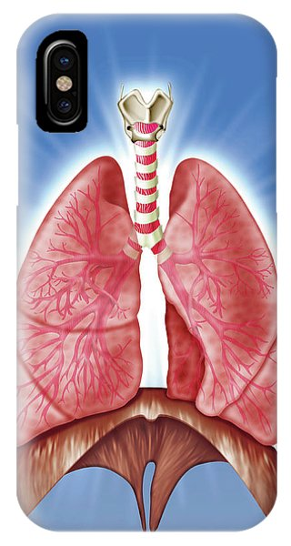 Human Respiratory System Phone Case by Harvinder Singh