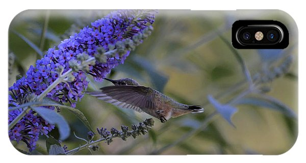 Humming Bird Green- Butterfly Bush IPhone Case