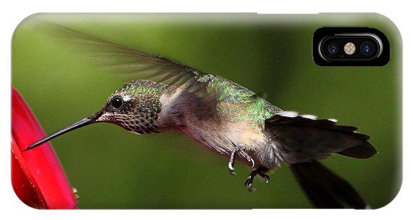 Look Hummingbird Eyelashes IPhone Case