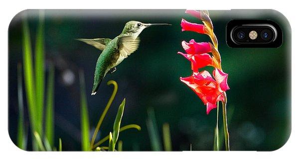 Hummingbird 1 IPhone Case