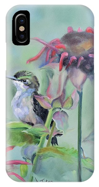Hummingbird And Coneflowers IPhone Case