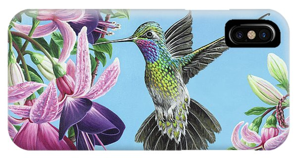 Hummingbird And Fuchsias IPhone Case