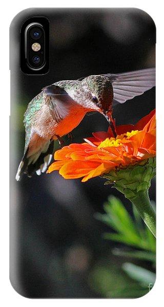 Hummingbird And Zinnia IPhone Case