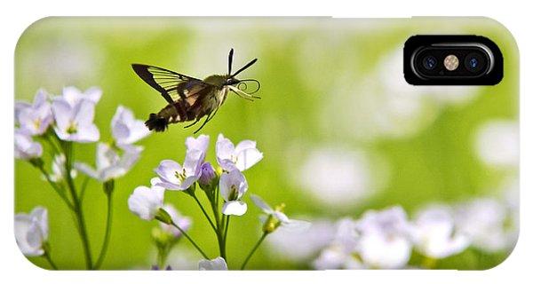 Beautiful Hummingbird iPhone Case - Hummingbird Clearwing Moth Flying Away by Christina Rollo