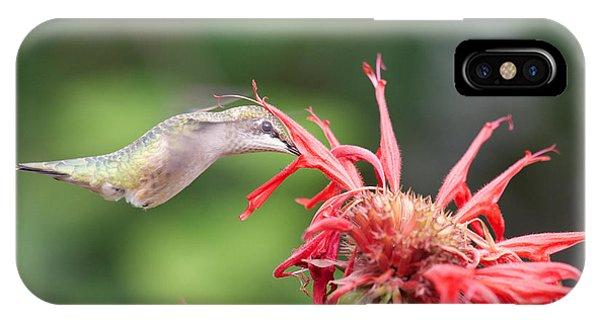 Hummingbird Defying Gravity IPhone Case