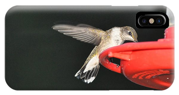 Hummingbird Drinking IPhone Case