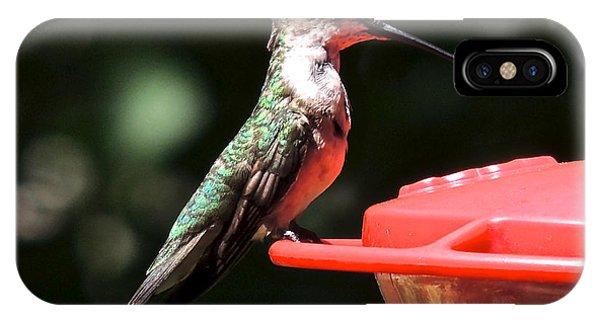 Hummingbird Feeding IPhone Case
