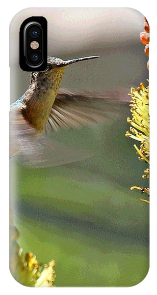 Hummingbird Feeding IPhone Case