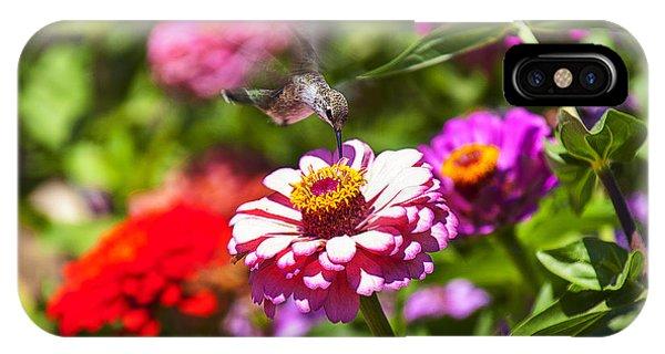 Flower Gardens iPhone Case - Hummingbird Flight by Garry Gay