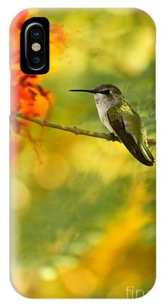 Hummingbird In A Painting Phone Case by Michael Cinnamond