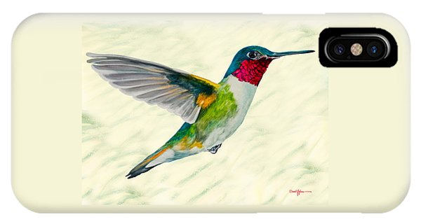 Da103 Broadtail Hummingbird Daniel Adams IPhone Case