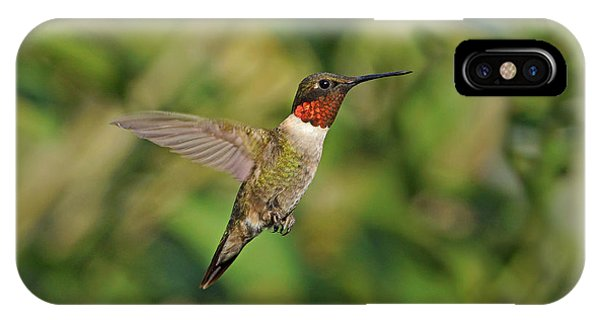 Hummingbird In Flight IPhone Case