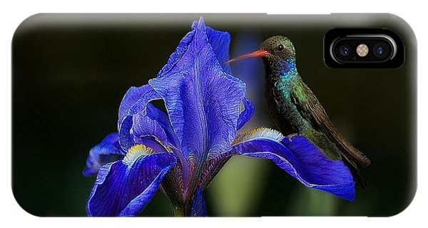 Hummingbird On A Mexican Blue Exotic Flower IPhone Case
